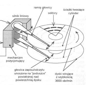 Ilustracja Budowa komputera - Polishwords News