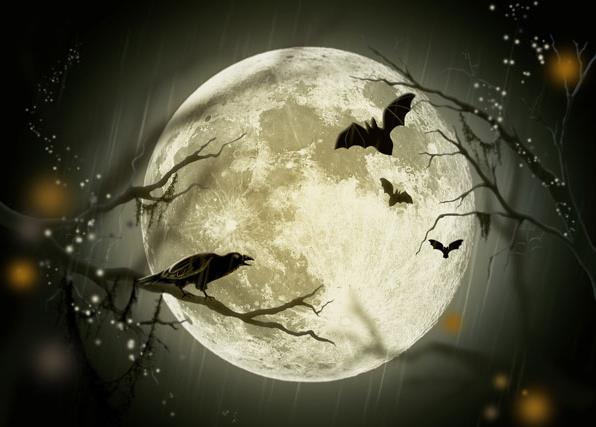 Ilustracja 21 zdjęć na Halloween 2013 - Polishwords News