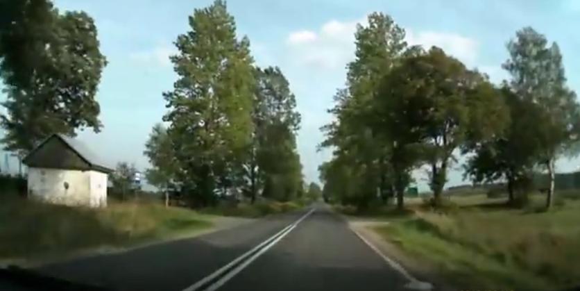 Ilustracja Drogowy survival test – sprawdź czy umiesz jeździć po polskich drogach - Polishwords News