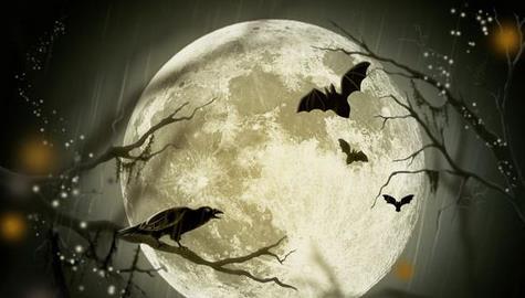 Ilustracja Komplet 7 poradników na #Halloween 2013: dekoracje, przepisy, przebrania, inspiracje - Polishwords News